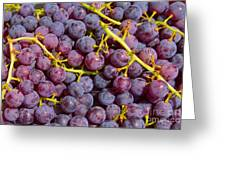 Italian Red Grape Bunch Greeting Card