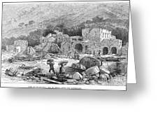 Italy: Earthquake, 1881 Greeting Card
