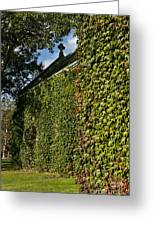 Ivy Covered Chapel Greeting Card