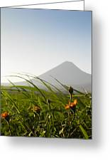 Izalco From The Ground Greeting Card