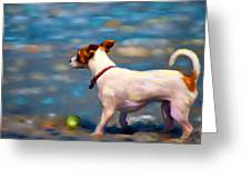 Jack At The Beach Greeting Card by Michelle Wrighton