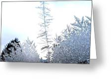 Jack Frost's Ice Forest Greeting Card