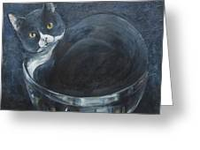 Jack-in-the-bowl Greeting Card