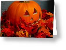 Jack-o-lantern Halloween Display Greeting Card