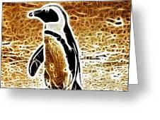Jackass Penguin  Greeting Card