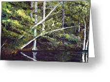 Jackson Bluff On The Waccamaw River Greeting Card