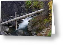 Jackstraws Over White Water  Greeting Card