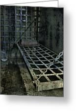 Jailbird Cage  Greeting Card
