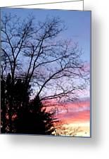 January Silhouette Greeting Card