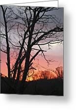 January Sunrise 3 Greeting Card