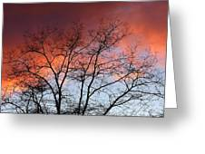 January Sunset Silhouette Greeting Card