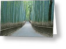 Japan Kyoto Arashiyama Sagano Bamboo Greeting Card