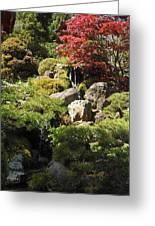 Japanese Tea Gardens San Francisco Greeting Card