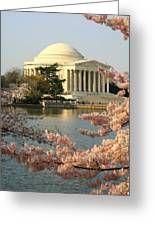 Jefferson Cherry Blossoms Greeting Card