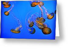 Jellyfish Cube Greeting Card