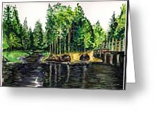 Jersey Pines Greeting Card
