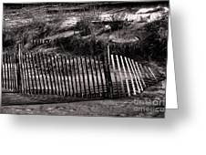 Jersey Shores II Greeting Card