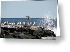 Jersy Shore Greeting Card