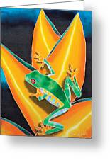 Joe's Treefrog Greeting Card