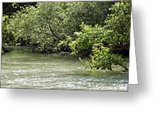 Jorden River Banks 04 Greeting Card