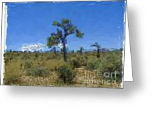 Joshua Tree - California Greeting Card