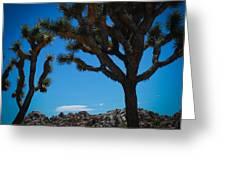 Joshua Tree 1 Greeting Card