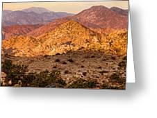 Joshua Tree Sunrise Panorama Greeting Card