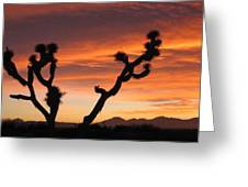 Joshua Trees In The Sunset Greeting Card