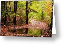 Josie's Brook Trail Greeting Card