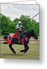 Joust 7516 Greeting Card