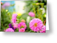 Joy Of Summer Time Greeting Card