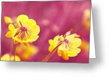 Joyfulness Greeting Card