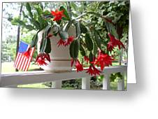 July Cactus With Old Glory Greeting Card