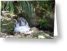 Jungle Falls II Greeting Card