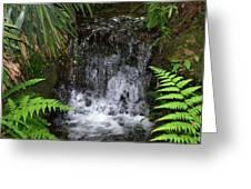 Jungle Falls IIi Greeting Card