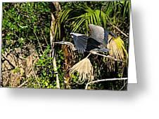 Jungle Flight Greeting Card