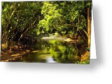 Jungle Stream Below The Secret Greeting Card