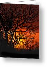 Just A Pretty Sunrise Greeting Card