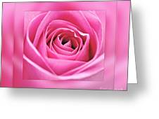Just Pink Greeting Card