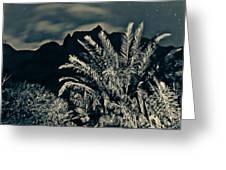 Kalalau Mountains At Night 2 Greeting Card