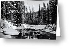 Kananaskis Creek Greeting Card