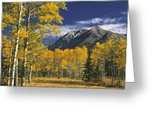 Kananaskis Fall Colors Greeting Card
