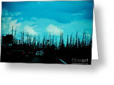 Katrina Trees Greeting Card