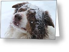 Keepstone Snows Greeting Card