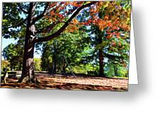 Kellifeer Park Greeting Card