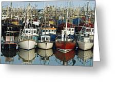 Kilkeel, Co Down, Ireland Rows Of Boats Greeting Card