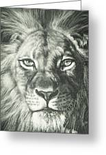 King 2 Greeting Card by Joanna Gates