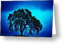 King Oak Greeting Card by Helen Carson
