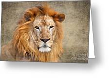 King Of Beasts Portrait Of A Lion Greeting Card