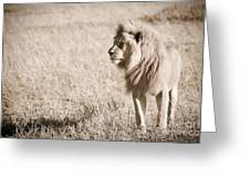 King Of Cats In Sepia Greeting Card